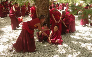 Monks debating at Sera Monastery.