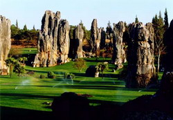 Stone Forest,Kunming