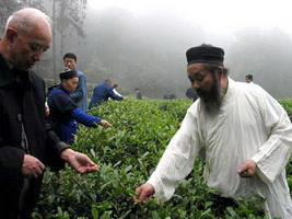 Qingcheng Taoist Tea, Sichuan,China