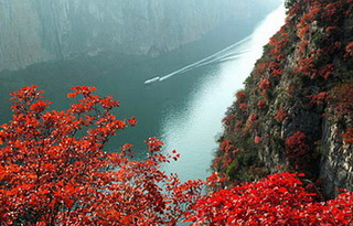 World Heritage with Yangtze Cruise