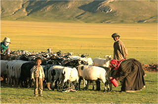 Tibet Eco and Culture Journey to the Northern Highland