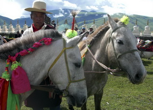 Horse Riding in West Sichuan